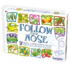 Follow your Nose